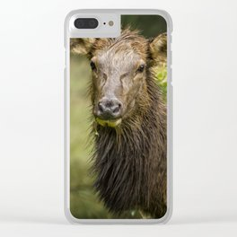 Should I Stay Or Should I Go Clear iPhone Case