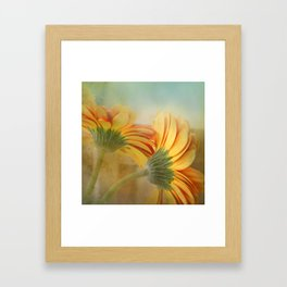 orange petals  Framed Art Print