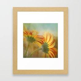 orange petals  Framed Art Print