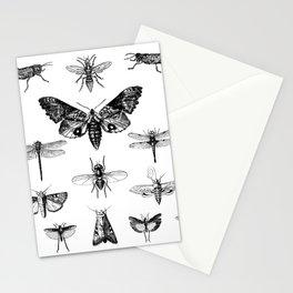 FLUTTER ... Stationery Cards