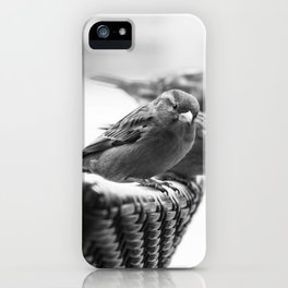 Sparrows On Chair Back iPhone Case