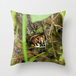 Box Turtle and Tadpoles Throw Pillow