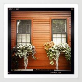 Charlestown Window Boxes Art Print