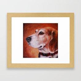 The Noble Beagle Framed Art Print