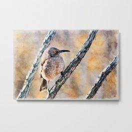 Desert Bird Morning Light Metal Print