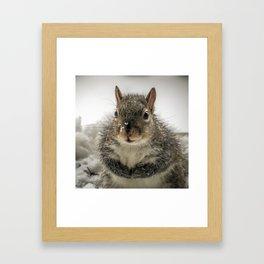 Adorable Praying Squirrel..Feed ME!! Framed Art Print