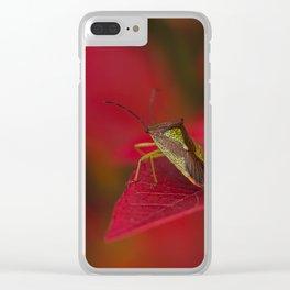 Hawthorn Shieldbug Clear iPhone Case