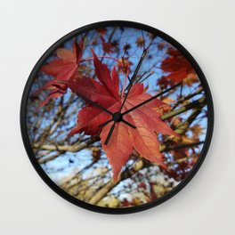 Maple leaf center stage Wall Clock