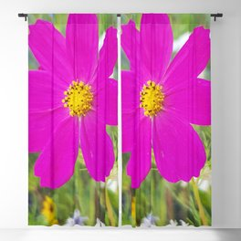 Flowers Go Wild in Wimbledon 5 - Cosmos the bold Blackout Curtain