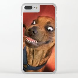 "I have a ""God-Given Right"" to bear teeth. 3 Clear iPhone Case"