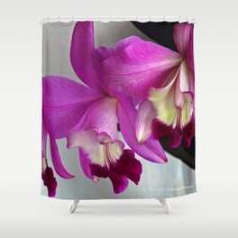 Laeliocattleya Orchid Shower Curtain