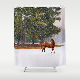 Winter in Horse Country Shower Curtain