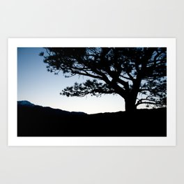 Twilight Tree Art Print
