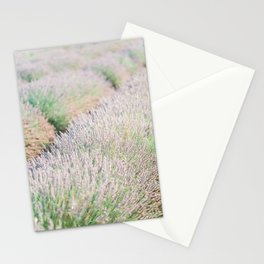 Lavender for days Stationery Cards