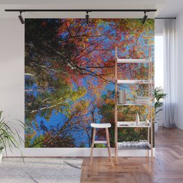Colorful, Autumn In New Hampshire Wall Mural