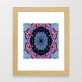 Mission Framed Art Print