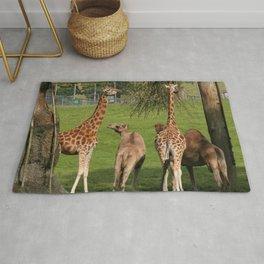 Giraffe And Camel Safari  Rug