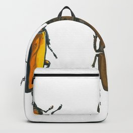 Illustration of Three Beetles Backpack