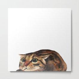Funny Cat Metal Print