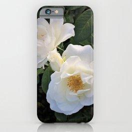 White flower in Butchart's Garden iPhone Case