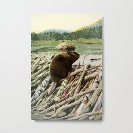 Fuertes, Louis Agassiz (1874-1927) - Burgess Animal Book 1920 (Beaver) Metal Print