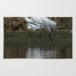 Great and Snowy Egrets, No. 3 Rug
