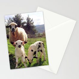 Two Ewes and Three Lambs Grazing Stationery Cards