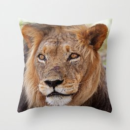 Big lion - Africa wildlife Throw Pillow