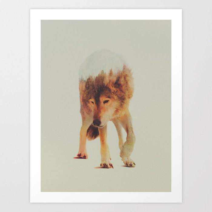 Discover the motif NORWEGIAN WOODS: THE GREY WOLF by Andreas Lie as a print at TOPPOSTER