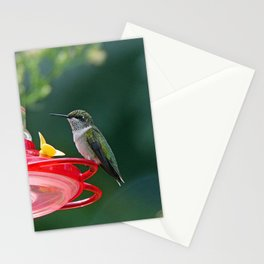 Perched Hummingbird Stationery Cards