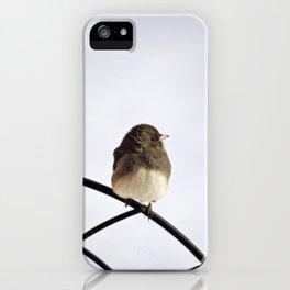 Pretty Winter Junco iPhone Case