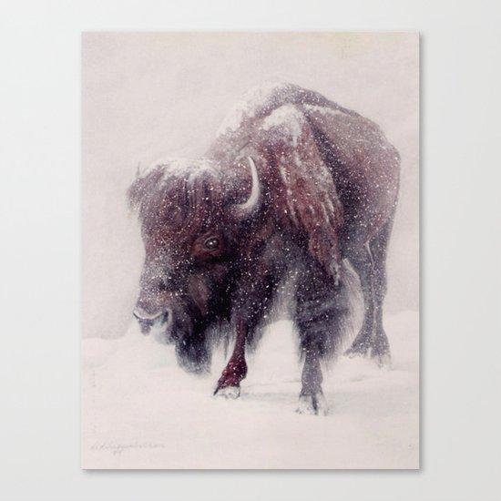 Buffalo Blizzard painting Canvas Print