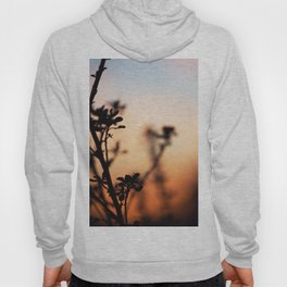 Plant and sky Hoody