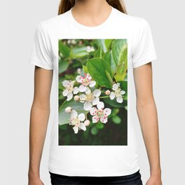 Chokeberry Flowers T-shirt
