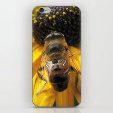 A Bee's Life iPhone & iPod Skin