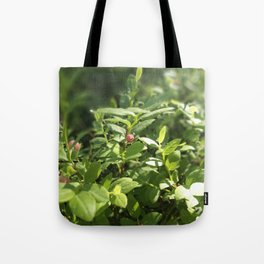 Underbrush wonders in the forest Tote Bag