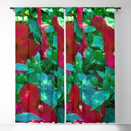 Giant Poppies Blackout Curtain