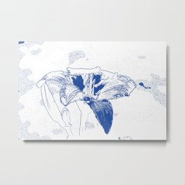 Day Lily Print in Blue Metal Print