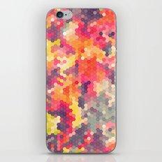 Summer Garden 4 iPhone & iPod Skin