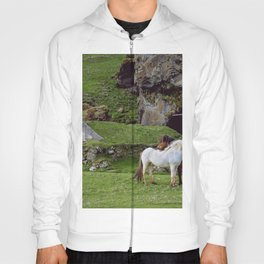 WHITE AND BROWN HORSES STANDING ON GREEN GRASS IN THE MORNING Hoody