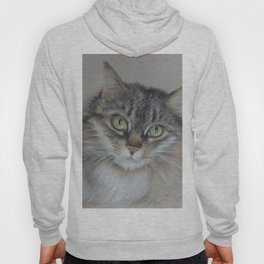Tabby cat Maine Coon portrait Pastel drawing on the grey background Hoody