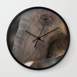 Elephant - Digital Painting Wall Clock