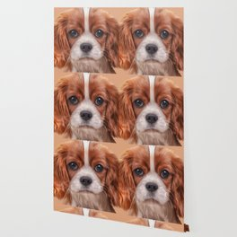 Drawing Cavalier King Charles Spaniel Wallpaper