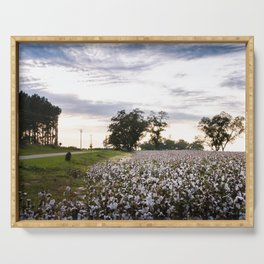 Cotton Field 9 Serving Tray
