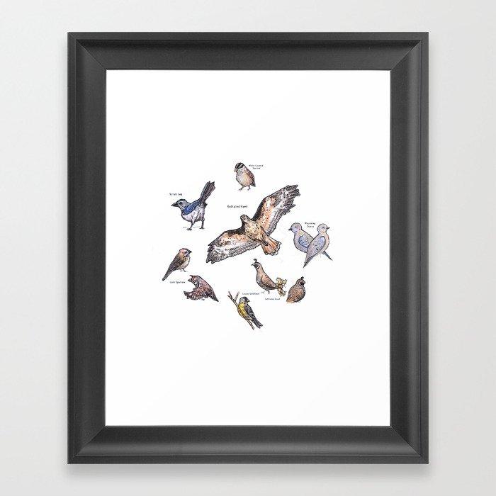 Northern Nevada Backyard Birds Framed Art Print