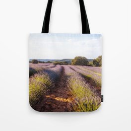 Lavender Fields at Sunset Tote Bag