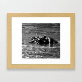 Hippo Head; Black and White Nature Photography from Africa Framed Art Print