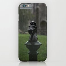 Hitching Post in the Rain iPhone 6 Slim Case