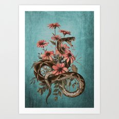 Snake 4 Art Print
