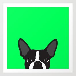 Boston Terrier Green Art Print